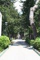 Kastela-hotel-palace-zufahrt-IMG 4392.jpg